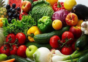Monthly Vegan Lunch at Taj of Marin